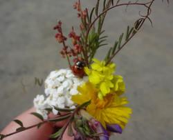 Ladybug Boquet 5