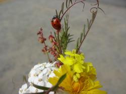 Ladybug Boquet 3