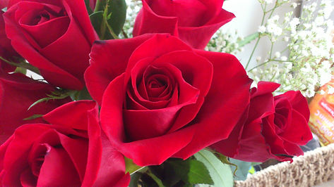 becky of colors, red roses, donation, appreciation, thank you
