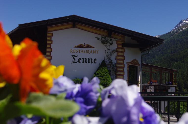 Sommer Tenne (84).JPG