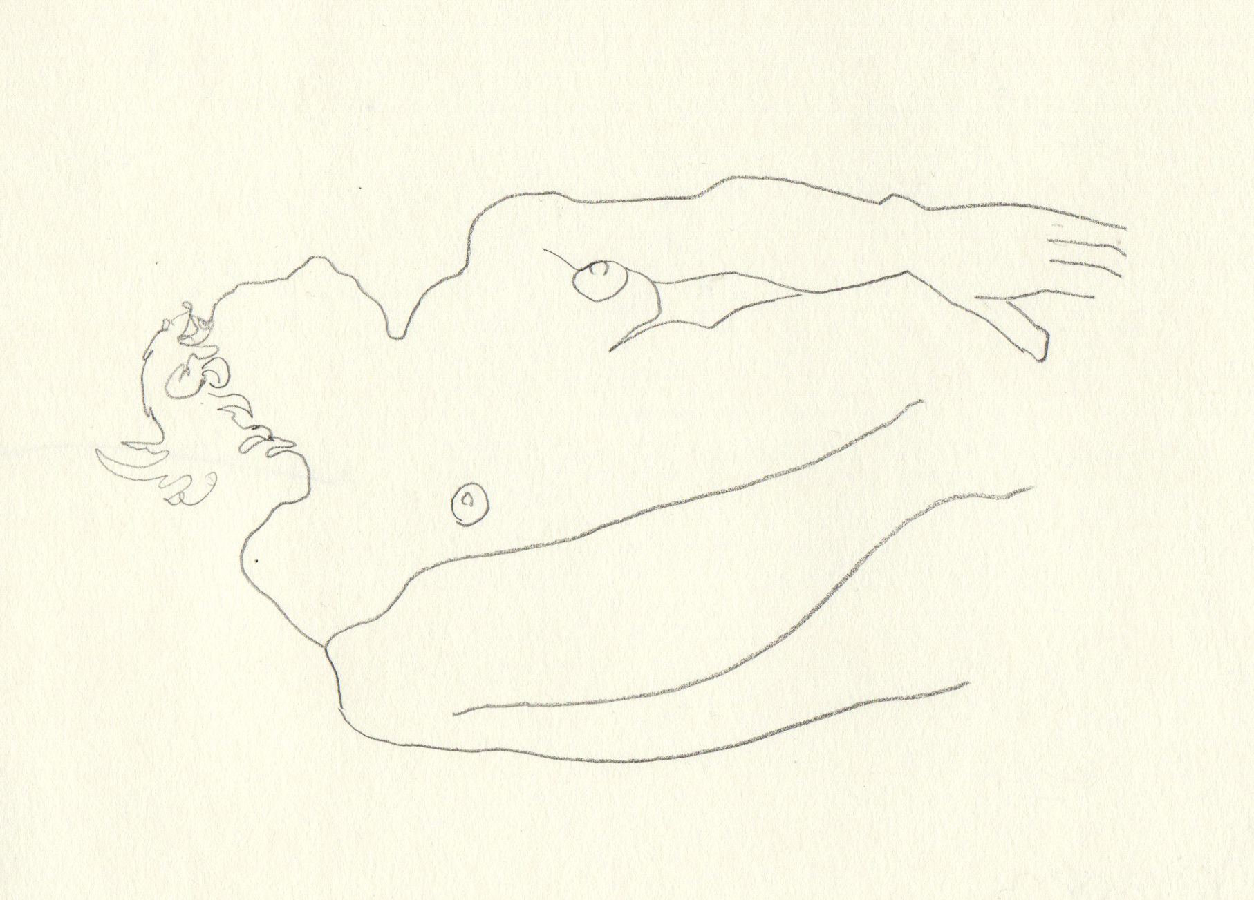2012_Sketch_F-Beudin_071