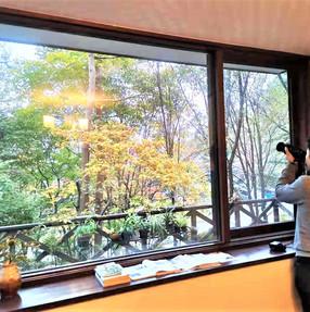 ダイニングルームの窓2