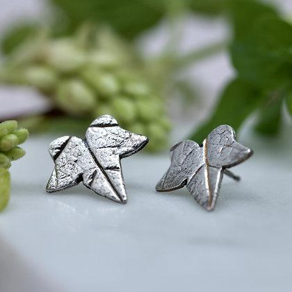 Fine silver Ivy leaf studs