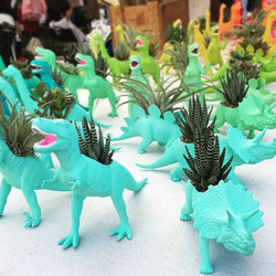 Hey Austin! The sun is out and the dinos