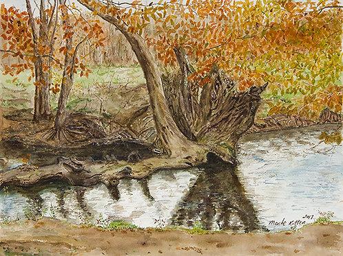 Autumn Creek