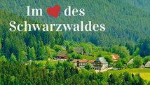 Landgasthof zum Schwanen Hornberg