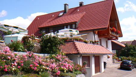 Ferienhaus Ott Schluchsee