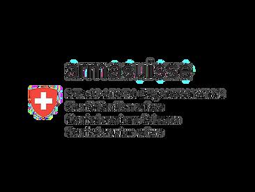 Armasuisse logo - Dpendent partner
