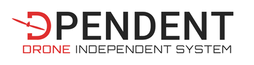 Logo_Dpendent_2021_rectangle2_transparen