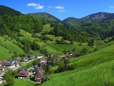 Münstertal - das Tal der hundert Täler! Ihr Weg tief hinein in den Schwarzwald
