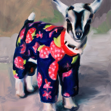 Baby Goat in Strawberry Jammies