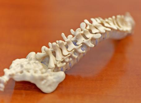 Kto wyleczy bóle pleców – neurolog, czy ortopeda?