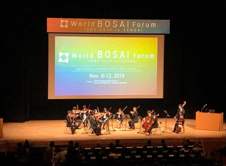 EpiNurse at the 2nd World Bosai Forum/IDRC in Sendai