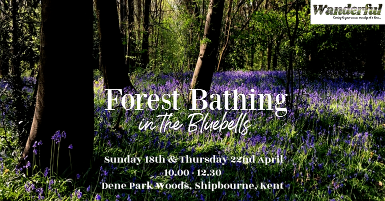 FB in the Bluebells.png