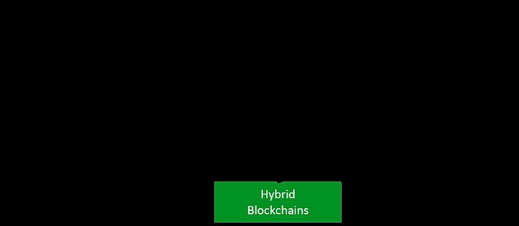 Hybrid Blockchains.png
