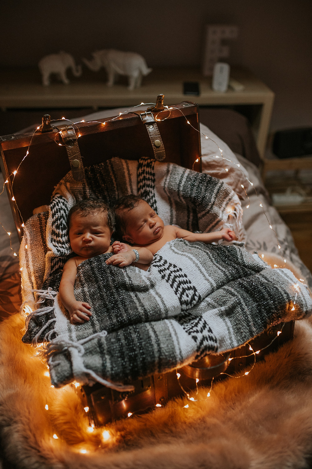 maternity photographies twins