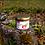 Thumbnail: Gem de căpșuni cu mentă