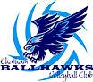 chatham_ballhawks[1].jpg