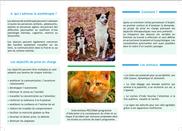 Plaquette - Zoothérapie