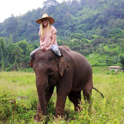 Ran-Tong Elephant Sanctuary