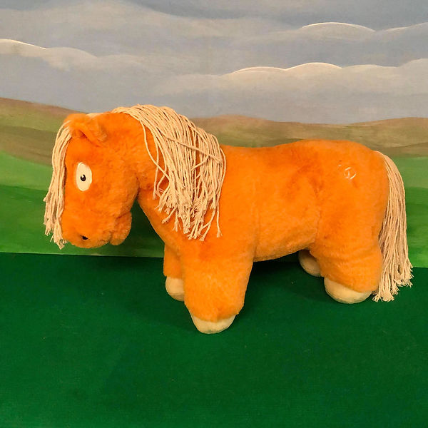 points of the pony.jpg