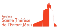 stt-logo-web-ok-e660d38-300x146.png