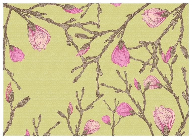 magnolia part 1