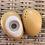 Thumbnail: מלחיה ופלפלת - ביצים