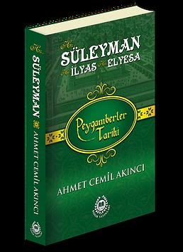 süleyman3d.png