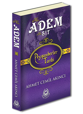 adem3d.png