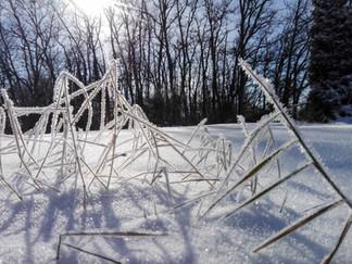 photo-paysage-neige-givre-auvergne