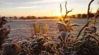 givre-leve-de-soleil-auvergne-nature