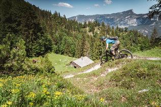 08 Low Res -  Rider Andi Valentin, Pic K