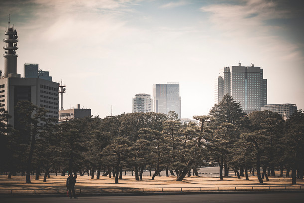 9 Tokio DAV Internet.jpg