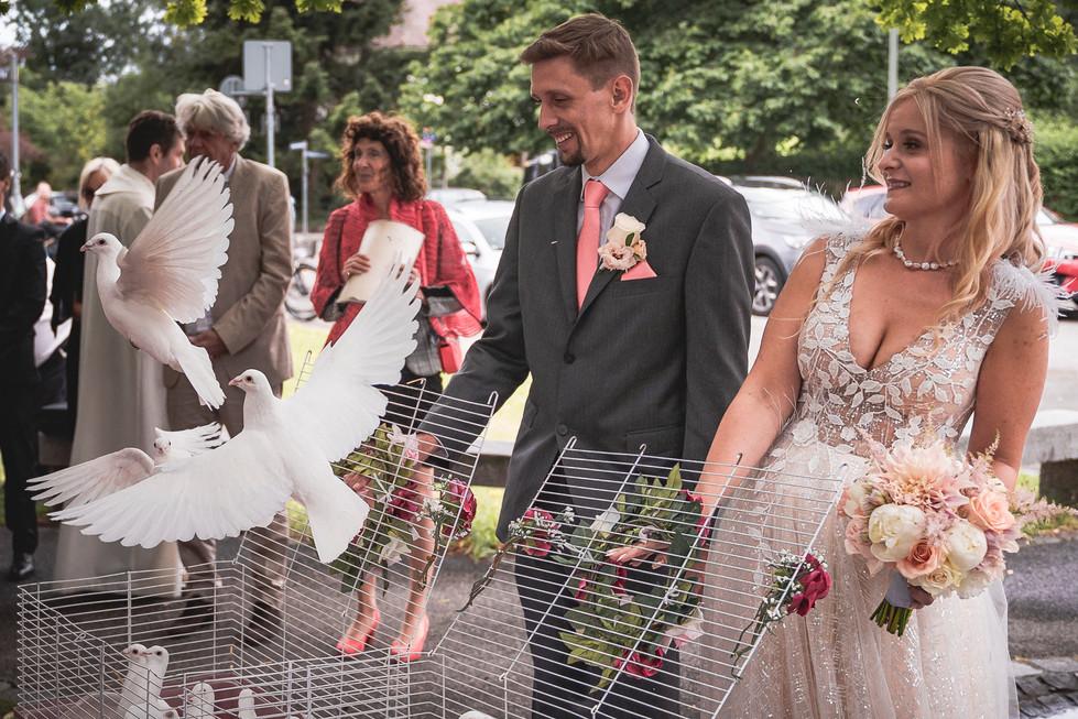 146 Hochzeit Eva und Michi_WEB  -  Taube