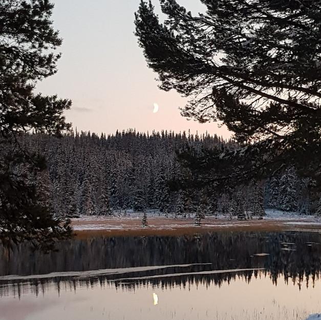 Høstmåne (2019)