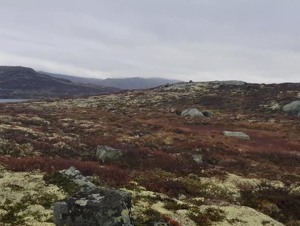 Trollsjøen, Jotunheimen (2020)