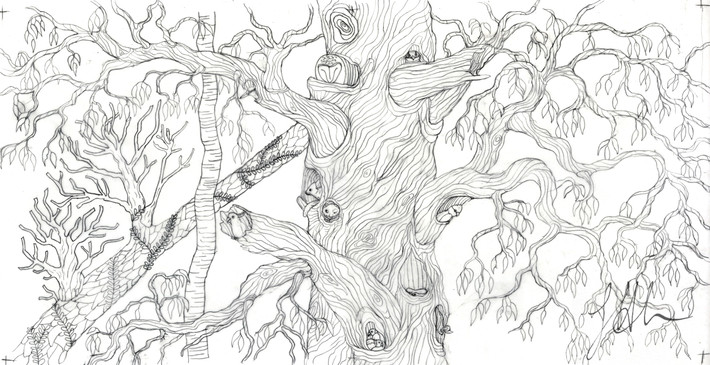 Sketch for tree colouring in page for Wildscapes