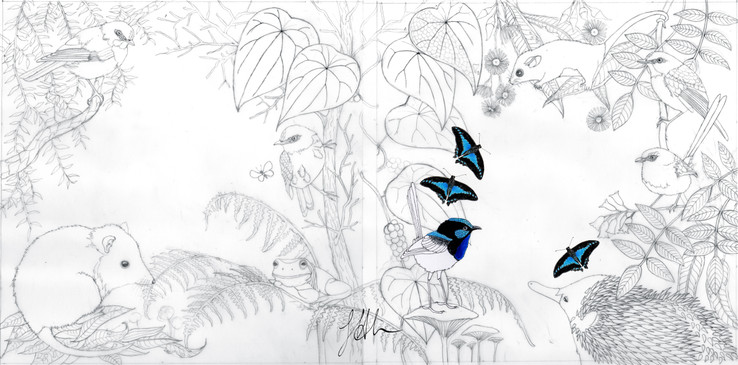 Early sketch for cover of Wildscapes colouring in book