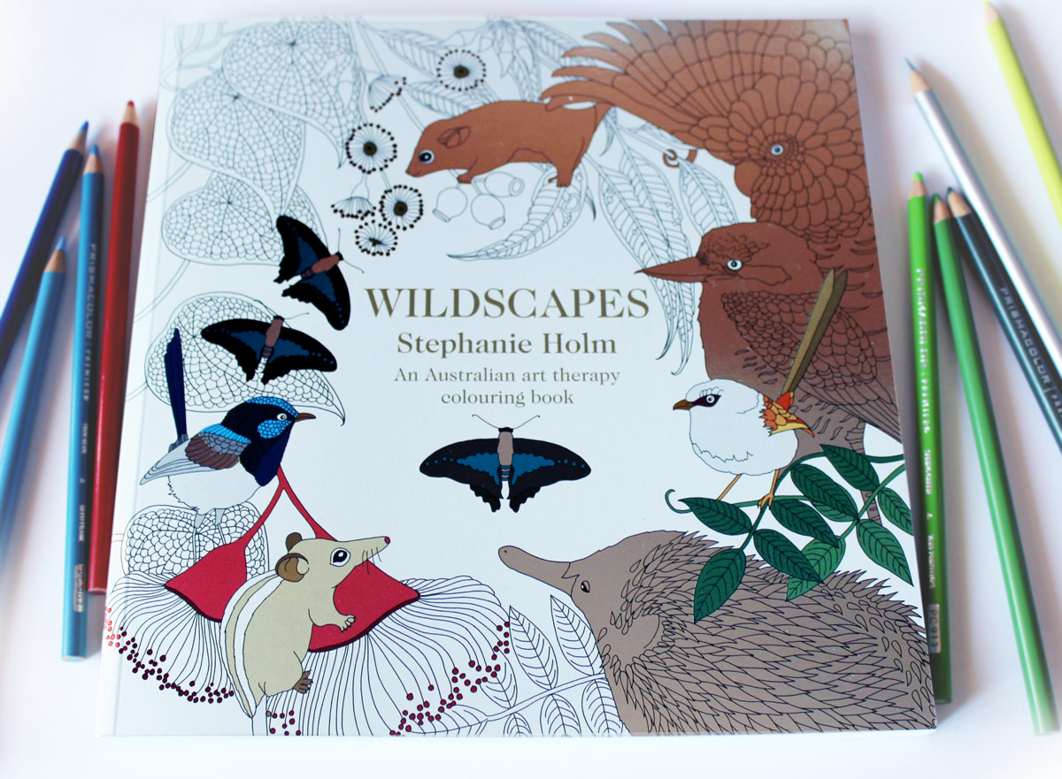Wildscapes cover by Stephanie Holm