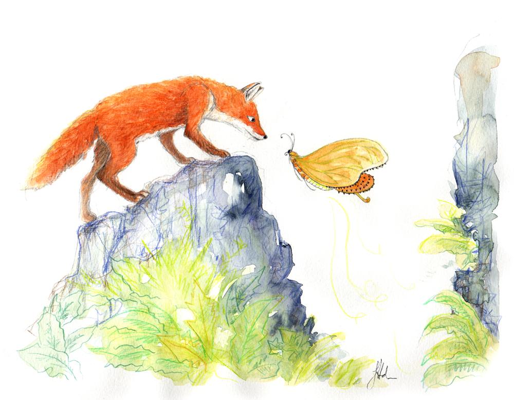 Fox & butterfly