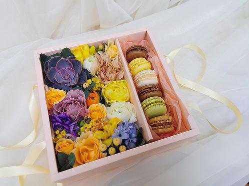 Cutie pătrată 6 macarons