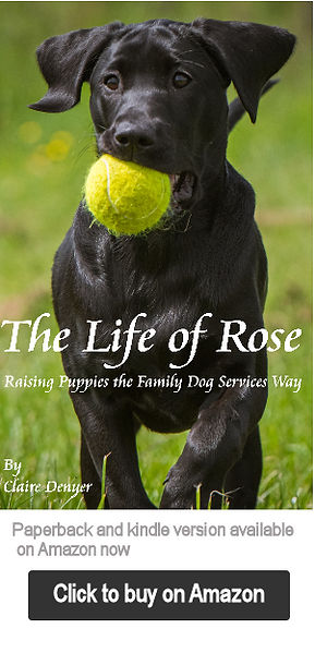 THe Life of Rose - Book cover