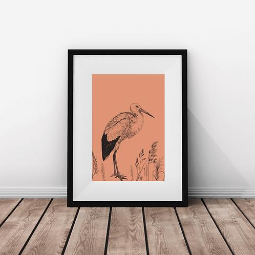 Bird Life - Print