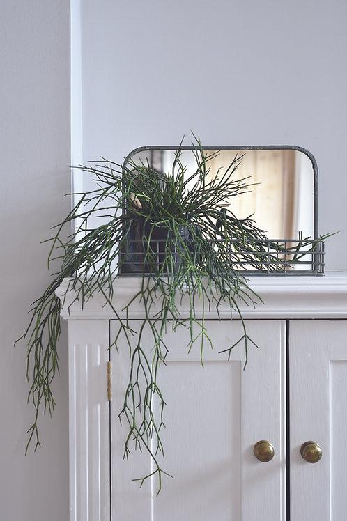 Mirror with Wire Shelf