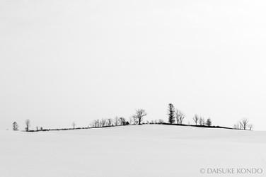 Winter Hokkaido
