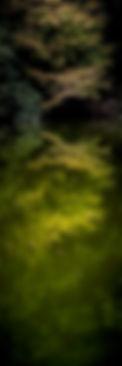 RVK23708-Ed-20131031-.jpg