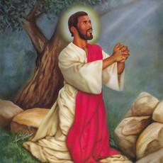 Christ Praying Agony in the Garden.jpeg