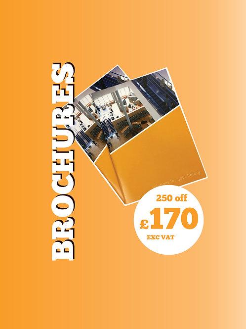 250 A5 Brochure