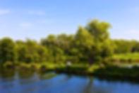 Palmen-SeychellenPOTSDAM_32.jpg